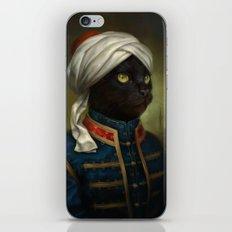 The Hermitage Court Moor Cat iPhone & iPod Skin