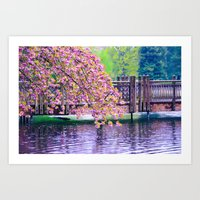 Bridge and Cherry Tree at Crystal Springs Rhododendron Garden, Portland Art Print