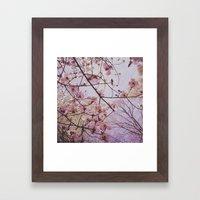 Dogwood 1 Framed Art Print