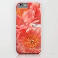 iPhone & iPod Case featuring Paeonia #6 by Alicia Bock