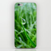 Morning Dew iPhone & iPod Skin