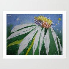 Single daisy Art Print