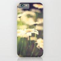 Wild Daisies iPhone 6 Slim Case