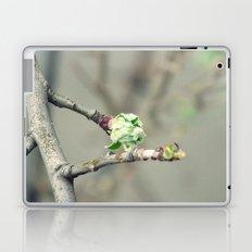 Bud in spring Laptop & iPad Skin