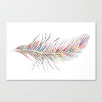 Rainbow Feather  Canvas Print