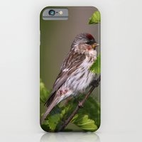 Good Morning Tweety! iPhone 6 Slim Case