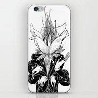 To Blosom iPhone & iPod Skin