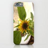 Flower Spider iPhone 6 Slim Case