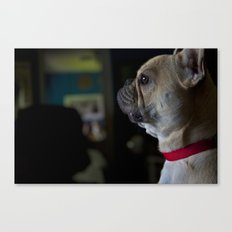 Sophie the French Bulldog Canvas Print