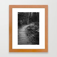 The Pathway Framed Art Print