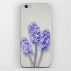 Bright Lilac Hyacinths iPhone & iPod Skin