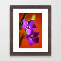 orange and purple Framed Art Print