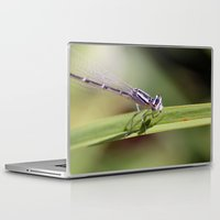 dragon Laptop & iPad Skins featuring Dragon! by kealaphotography