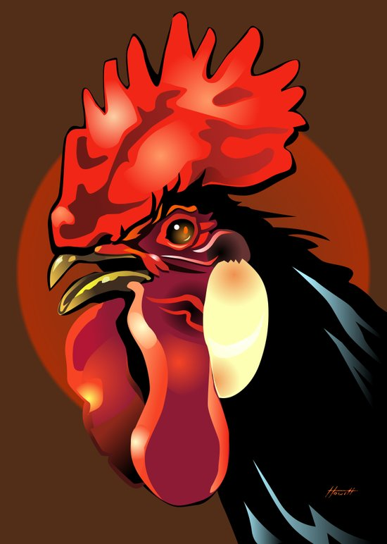 Andalusian Rooster 1 Art Print