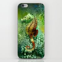 Seahorse Tropical Ocean Life iPhone & iPod Skin