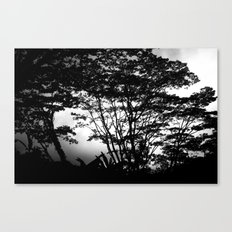 Hilo Misty Morning Canvas Print