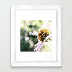 Elegance in Autumn Framed Art Print
