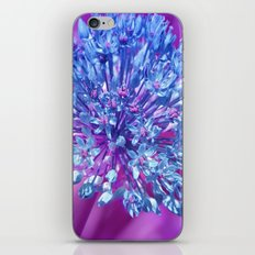 Allium 137 iPhone & iPod Skin