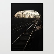 Lines and Curves Canvas Print