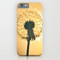 Sunburst iPhone 6 Slim Case