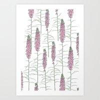 Flowery Pods Art Print