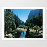 Zumwalt Meadow Trail Art Print