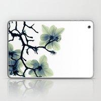 Translucence Laptop & iPad Skin