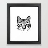 Strabismus Cat Framed Art Print