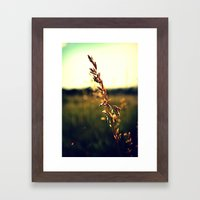 Prairie Wild - Color Framed Art Print