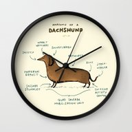 Anatomy Of A Dachshund Wall Clock