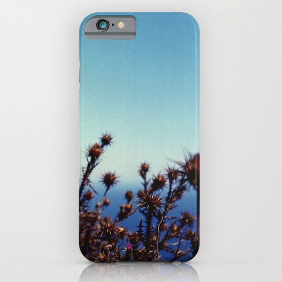 Sun-Bleached Blossom iPhone & iPod Case