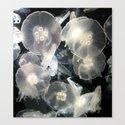 JellyFish Garden Canvas Print