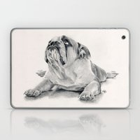IPug Laptop & iPad Skin
