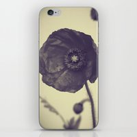 Nature In Black And Whit… iPhone & iPod Skin