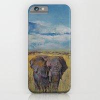Elephant Savanna iPhone 6 Slim Case