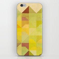 San Francisco Row iPhone & iPod Skin
