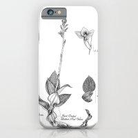 Jewel iPhone 6 Slim Case