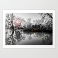 Art Print featuring TREE-FLECTION by Catspaws