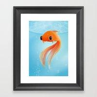 Little Fish Coy Koi Framed Art Print