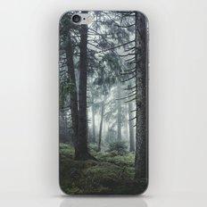 Path Vibes iPhone & iPod Skin