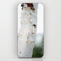 Birtch iPhone & iPod Skin