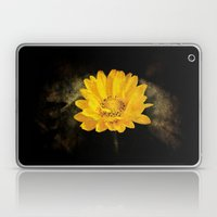 Beautiful Sunflower with Dark Brown Background Laptop & iPad Skin