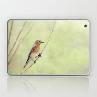 Perched On A Frail Branch Laptop & iPad Skin