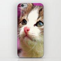 Kittens in bowl iPhone & iPod Skin