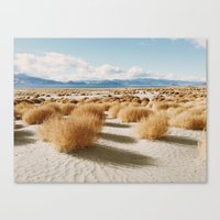Paiute Land Canvas Print