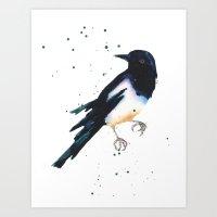 Magpie, bird art, bird lover gift, magpie painting Art Print