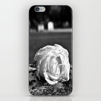Rose of remembrance iPhone & iPod Skin