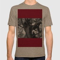 Berry Beary Mens Fitted Tee Tri-Coffee SMALL