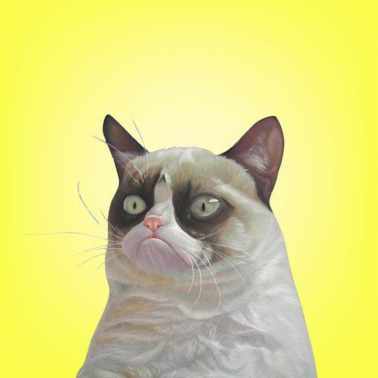 grumpy-cat-yellow Art Print