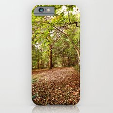 Autumn Woods iPhone 6 Slim Case